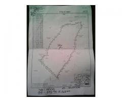 A Vendre Hevié superficie 232hecta avec titre foncier