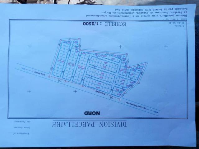 Domaines agricoles très fertiles et sécurisés à ZINKANME (DJIDJA), accessible à véhicule