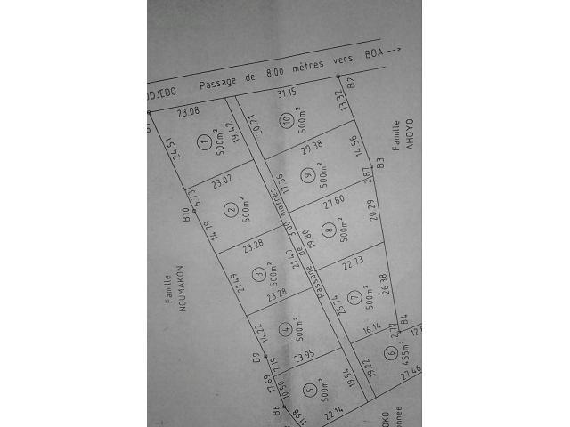 En vente des terrains: ZE AGBODJEDO Superficie: 500m²/parcelle TANGBO DJEVIE