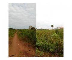 Des parcelles de 400 m2 à TITRE FONCIER disponibles à Zoundja