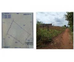Un domaine d'un hectare avec titre foncier à Zè Yokpo-centre à une distance de 800m
