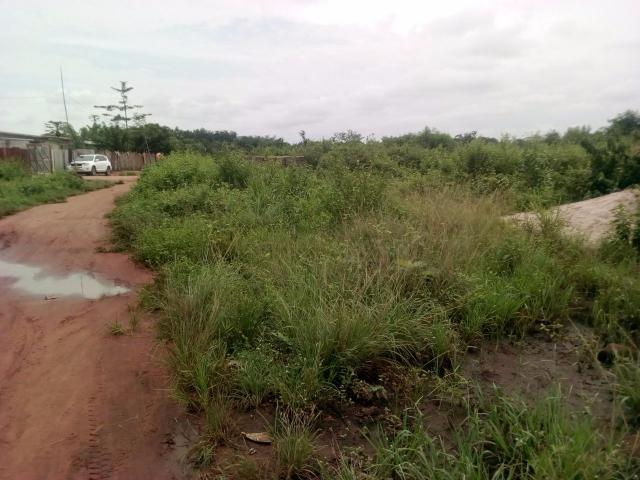 À VENDRE à Calavi ATTADJÈ des parcelles à l'État des lieux