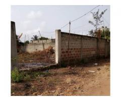 Parcelle clôturée de 350 m2 avec Titre Foncier personnel à vendre  à calavi zoca