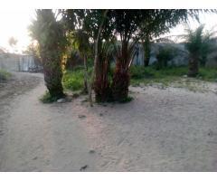 À VENDRE à PK10 (Sèyivè), route de Porto-Novo des parcelles bien positionnées