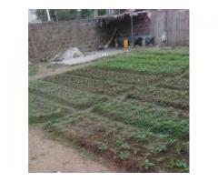 4 parcelles clôturées ensembles de 390m² chacune a vendre a zogbo dans la zone CRS