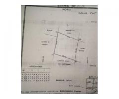 À vendre Parcelle de superficie 596m2  À Cotonou Fidjrossè