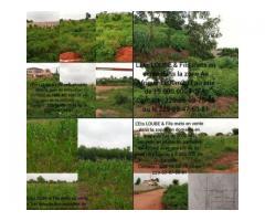 domaine et parcelle dans la zone Air Afrique dans la zopah