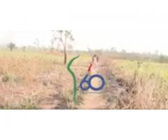 60 ans d'indépendance du Bénin ! Promotion de parcelles sécurisées à BERTOGEI