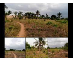 deux hectares avec TF à Ouidah juste après le péage à 1 km du goudron