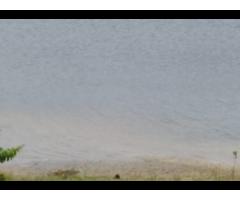 EN VENTE A TREICHE-VILLE : UN BEAU TERRAIN PLATS  AU BORD DE LA LAGUNE EBRIE